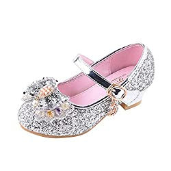 Y-Silver Mary Jane Low Heels Shoes