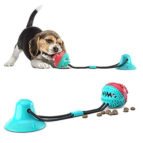 Paddsun Hundespielzeug mit Saugnapf, Zahnbürsten-Stick, Hundezahnbürste Kauspielzeug, Ball Leckerli-Spender für Hunde Welpen,Zahnreinigung mit Zahnpflege-Funktion für Hund Saugnapf Hundespielzeug