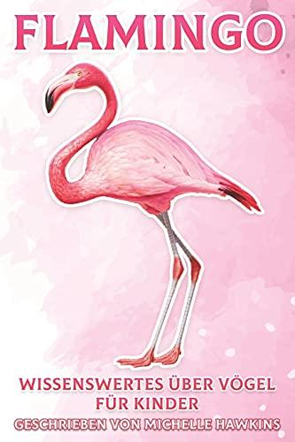 Flamingo: Wissenswertes über Vögel für Kinder #18