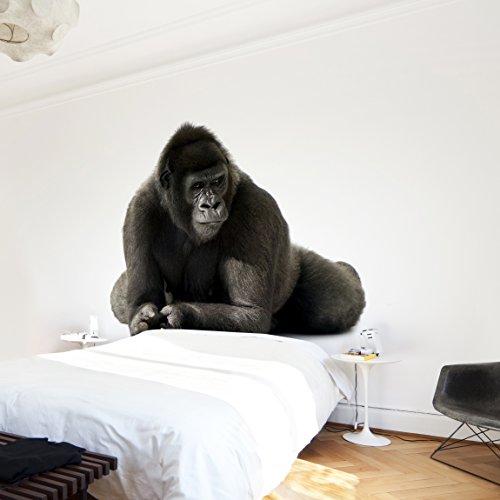 Apalis Vliestapete Gorilla I Fototapete Quadrat | Vlies Tapete Wandtapete Wandbild Foto 3D Fototapete für Schlafzimmer Wohnzimmer Küche | Größe: 336x336 cm, grau, 97713