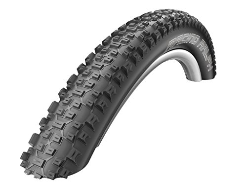 Schwalbe Racing Ralph Snake Skin Tubeless Ready Pace star Folding (26x2.25-Inch)