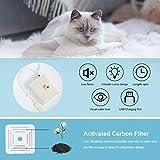 Zoom IMG-1 decdeal 1fontanella per gatti cani