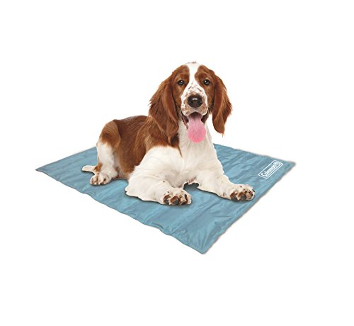 Best cool mats for dogs