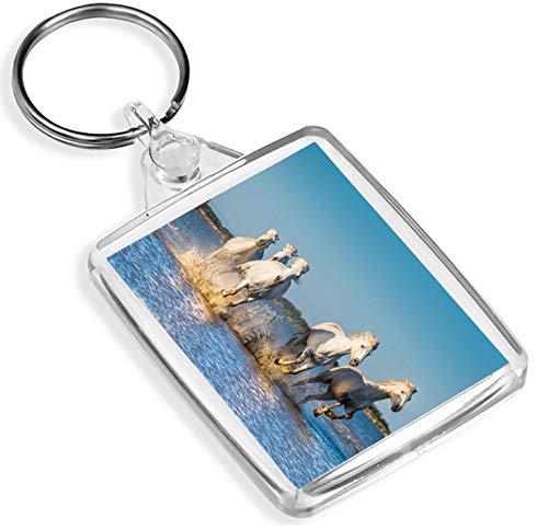 Porte-clés en vinyle Destination - 1 x Camargue Five White Horses France - Porte-clés - IP02 - Cadeau Maman Papa Kids #3161