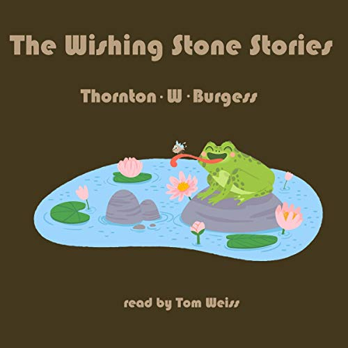The Wishing Stone Stories cover art
