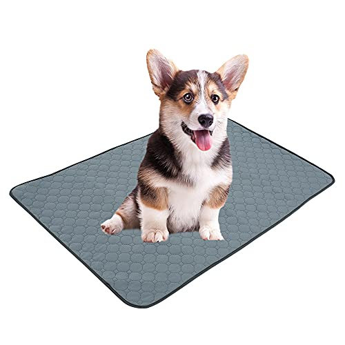 Alfombras de Adiestramiento para Perros y Gatos,Almohadilla de Orina para Mascotas Perro Gato,Impermeable Absorbente Alfombra Lavable y Reutilizables para Mascotas Absorción Orina (Gris 100*67cm)