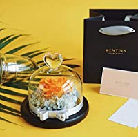 LYLSXY 母乳の贈り物としてガラスドームで覆われた造られた花、保存されたバラ保存の花の頭。,B