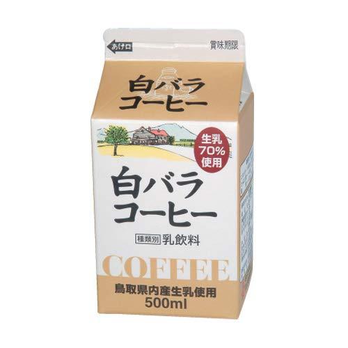 白バラ コーヒー/500ml×10本/クール便