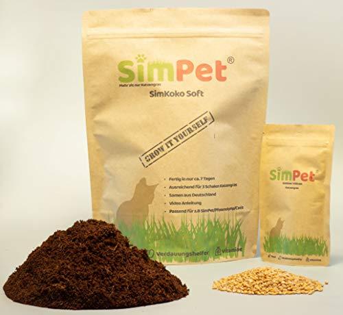 3X Katzengras selber züchten mit Kokos Erde u. Samen fertiges Soft Gras in ca. 7 Tagen