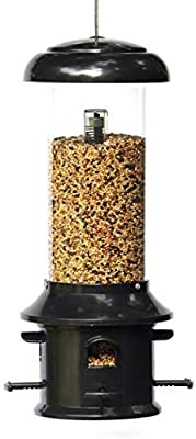 Nature's Rhythm Squirrel Proof Bird Feeder of Weather Guard 4 Classic Ports,1.5lb Seed Capacity
