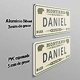 MEGADECOR Placa de Matrícula Decorativa de Aluminio o PVC Impreso de Estilo Vintage Americano Personalizado con Nombre Daniel 8 Modelos (Texas, Aluminio Dibond 3mm)