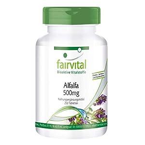 Alfalfa 500mg - Medicago sativa - VEGANA - 250 Comprimidos - Calidad Alemana
