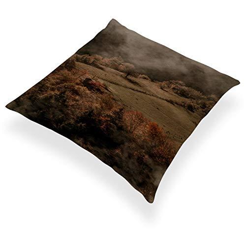 DKE&YMQ Funda de almohada de lino y algodn ligero, individual, diseo de comunidad vegetal, fenmeno atmosfrico Shrubland Humo niebla
