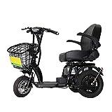 Joyfitness Ancianos Vespa eléctrica Plegable Triciclo Antiguo tripulado...