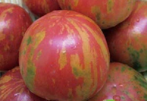 """Ungarische Samen Tomate\""""gestreifte Cherry\"""" sehr selten,von unserer ungarischen Farm samenfest, nur organische Dünger, KEINE Pesztizide, BIO hu-öko-01"""