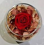 Rosa preservada Blu in cubo di vetro + scatola rossa di Nestlé 100gr.