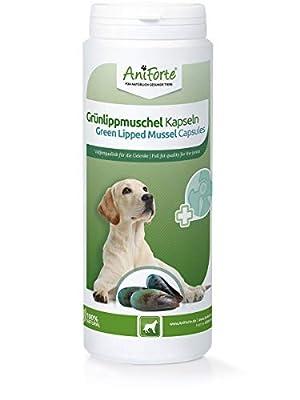 AniForte Grünlippmuschel Kapseln Hund 300 Stück - Gelenktabletten für Hunde in Vollfettqualität 10,2%, Glycosaminoglycane 3,3%, Tabs mit Grünlippmuschelpulver, unterstützt Gelenke & Gelenkfunktionen