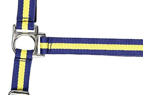 HKM nylon haltervlaggen met karabijnhaak, Warmblut, Vlag Zweden - 7907