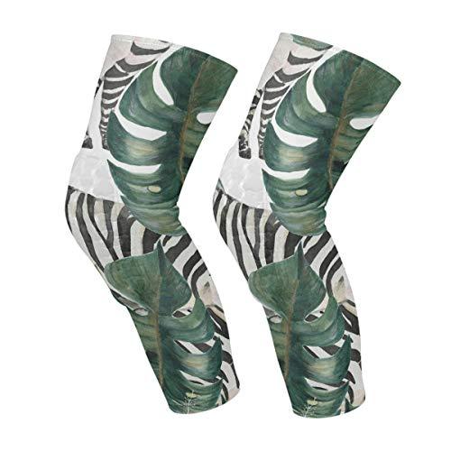 Zebra Nahtloses Muster Tropische Blume Palmblatt Knie-Ärmel Wadenbeinstütze Kompressionssocken Wabenschutzausrüstung