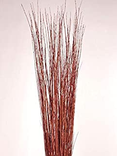 Green Floral Crafts - 3-4 Ft Burnt Red Orange Asian Willow Stems