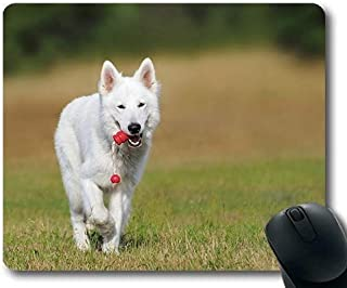Precision Seam Edge Gaming Mouse pad,Gaming Mouse pad Mouse mat for mac and Windows Gamer Swiss Shepherd Dog Dog White Animal Play Pet for Women/Men/Kids Sold by Roger