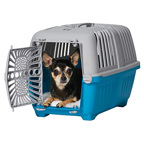 Midwest Spree Travel Pet Carrier   Hard-Sided Pet Kennel Ideal for Toy Dog Breeds, Small Cats & Small Animals   Dog Carrier Measures 19.1L x 12.5 W x 13H - Inches   Great for Short Trips to The Vet