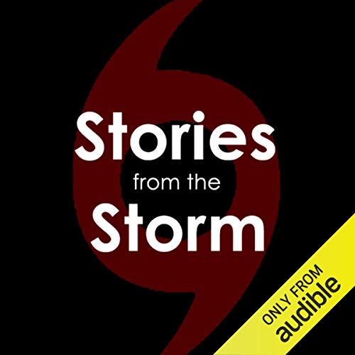 Stories from the Storm audiobook cover art