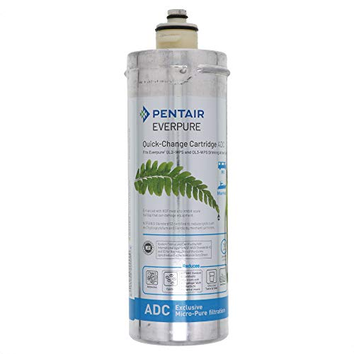 Everpure EV959206 ADC Full Timer RV Water Filter Cartridge-- (Package Of 2)