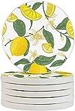 Cute Limón Posavasos Bebidas 6 unids/Set Diatomita Copa Coaster Protección Anti-Scalding para Tazas
