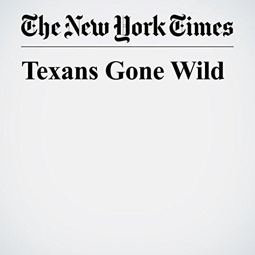 Texans Gone Wild copertina