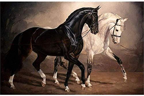 DIY 5D diamante pintura por kits de números para adultos taladro redondo completo bordado punto de cruz artesanía decoración de pared caballo blanco y negro 40x50cm