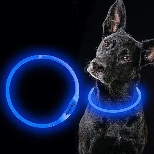 ELANOX Collar de perro LED recargable USB tamaño universal luminoso (azul)
