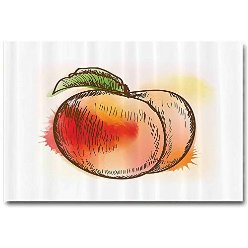 Peach Stickers Fresh Fruit Full of Vitamins and Nutrition Food Sketch Color Splatters Easter Gifts for Teenage Girls Cloth L30 x H60 Inch