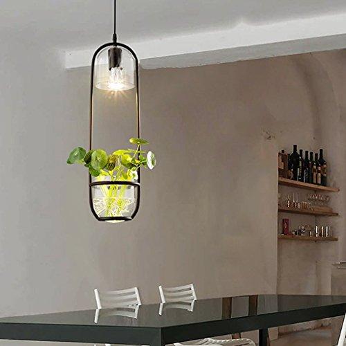 BAIJJ Hanglampen Planten Decoratie Hanglampen Restaurant Tuinlamp Kroonluchter E27 [Energie Klasse A ++] (Kleur: C, Maat: 16 * 55cm)