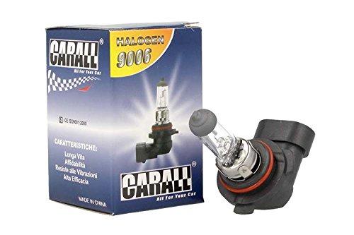 Lámpara halógena coche HB4900612V 55W P22D transparente marca Carall