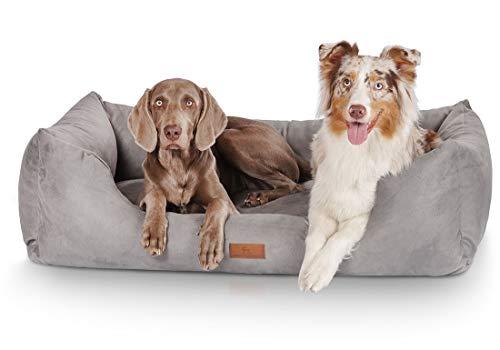 Knuffelwuff Hundebett XXL Dreamline Hundekorb Hundesofa Hundekissen Hundekörbchen waschbar Grau 120 x 85cm grosse Hunde