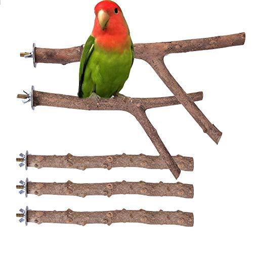 Wolancy 止まり木 オウム インコ 天然木 20cm 25cm Y型 爪を磨く 爪とぎパーチ鳥用 ケージアクセサリー 5本セット