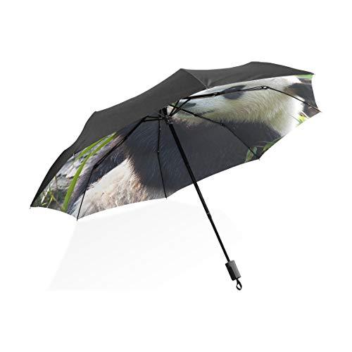 Paraguas Sombrero Para Niños Hambriento Oso Panda Gigante Comiendo Bambú Paraguas Plegable...