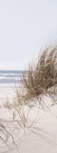 Eurographics DG-DT4087 Glasbild Deco Glass Sea Of Dunes 30 x 80 cm