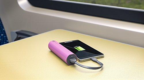 GP Batteries draagbare powerbank opladers (2600 mAh, 1,2 A uitgang en 1 A ingang, metalen behuizing) 2600mAh roze