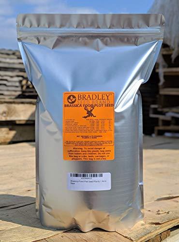 Food Plots Brassica Seed 5lbs plants 1 acre