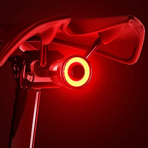 【2021 Version】 Bike Tail Light