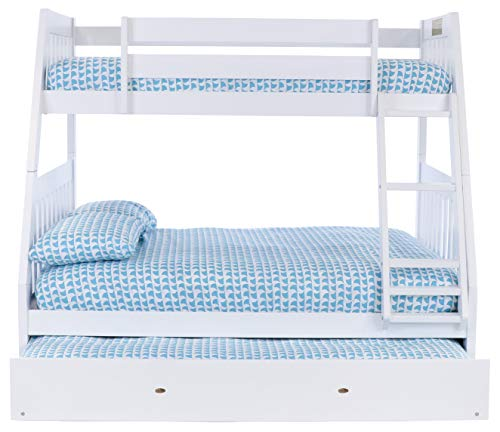 15+ Discovery World Bunk Beds Pictures
