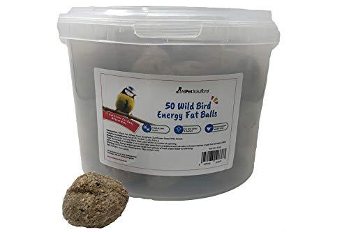 AllPetSolutions Wild Birds Energy Suet Fat Balls Without Nets - Wild Bird Feast Treat (50 Fat Balls)