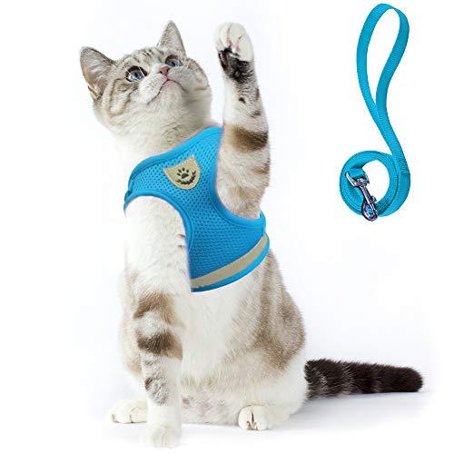 Supet Katzengeschirr Geschirr für Katzen Welpengeschirr Weich Kaninchengarnitur Katzen Weste mit Leine für Kitten Hunde Chihuahua (M für Große Katzen(Brustumfang: 33-38 cm), Hellblau)