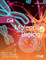 Molecular Biology, Third Edition