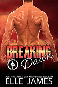 Breaking Dawn (Delta Force Strong Book 8)