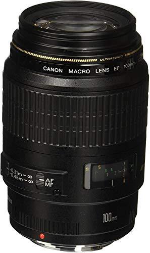 Canon Porträt- und Makroobjektiv EF 100mm F2.8 Macro USM für EOS (Festbrennweite, 58mm Filtergewinde, Diagonalbildwinkel), schwarz