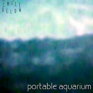 Portable Aquarium