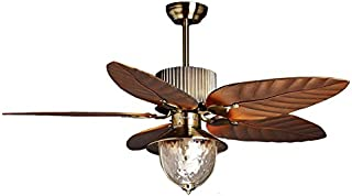 Best ceiling fan 220 volts Reviews